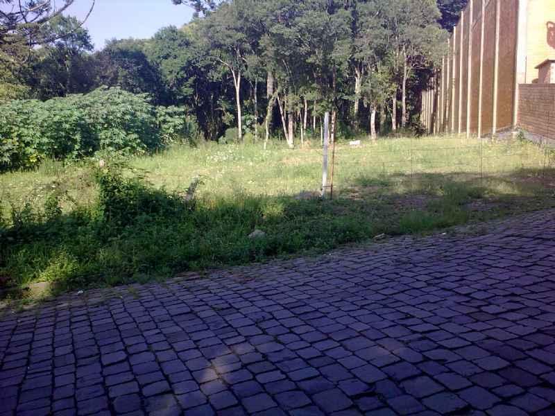 Terreno              no bairro SALGADO FILHO        em Caxias do Sul