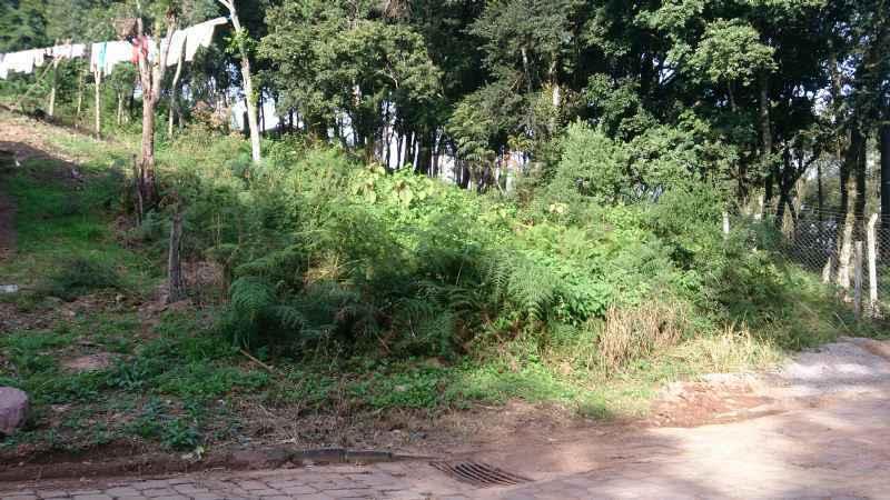 Terreno              no bairro DESVIO RIZZO         em CAXIAS DO SUL